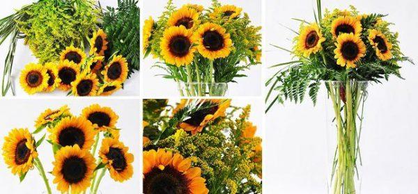 Cắm hoa hướng dương đơn giản